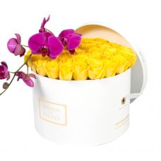 Yellow Roses with Purple Orchid Stem in White Round Box