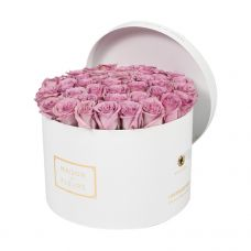 Purple Roses in White Round Box