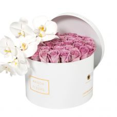 Purple Roses with White Orchid Stem in White Round Box