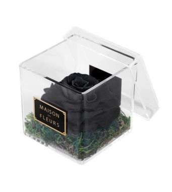 1 Large Long Life Black Rose in a Clear Acrylic Square box 10x10cm