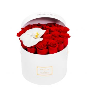 Red Roses and White Orchid Bloom in 20x15cm White MDF Box