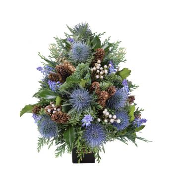 Festive Collection Mini Christmas tree with Blue Eryngium in a 8 cm Black square box