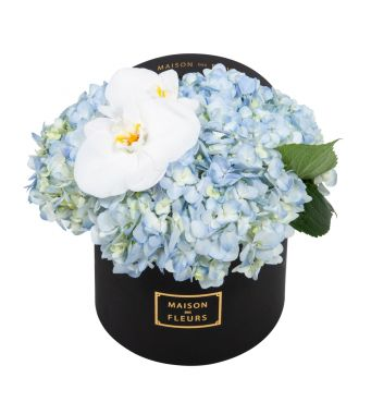 Blue Hydrangea and White Orchid Blooms in 20x15cm Black Round MDF Box