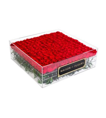 Fresh Red Roses In A 90 Cm Square Acrylic Box