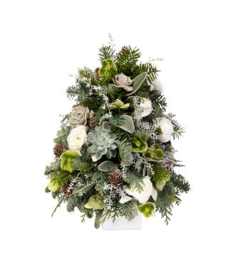Festive Collection Mini Christmas tree with succulents and Ranunculus in an 8 cm white square box