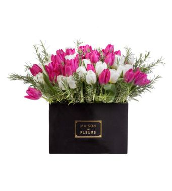White And Fuchsia Fresh Tulips Arrangement In A 30x30cm Black Square Box