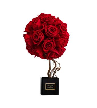 Long Life Red Roses Topiary in a Black Acrylic Square box 8x8cm
