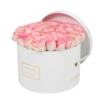 Baby Pink Roses in White Round Box