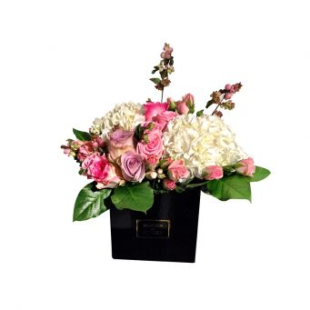 Purple and pink roses with white hydrangeas flowers in mdf black small square box
