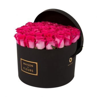 Fuchsia Pink Roses in Black Round Box