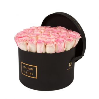 Baby Pink Roses in Black Round Box