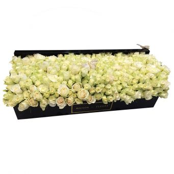 300 white roses in mdf black large rectangular box