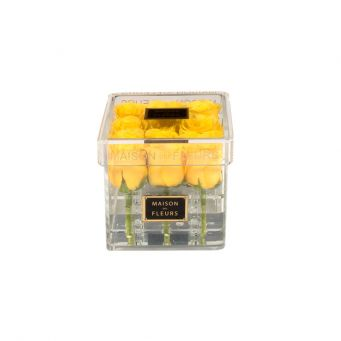 Acrylic clear small square box