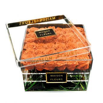 36 long life orange roses in acrylic clear square box