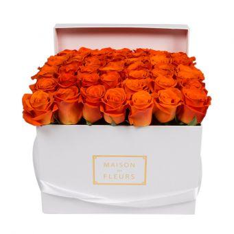 Orange Roses in White Square Box