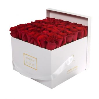 Red Roses in White Square Box
