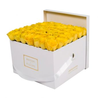 Yellow Roses in White Square Box