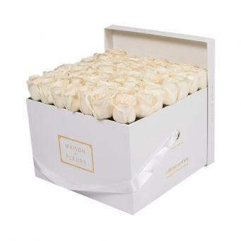 Cream Roses in White Square Box