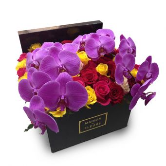 Purple Orchid Stems and Multi-color Roses
