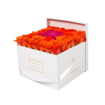 Orange Roses in White Square Box with 9 Fuchsia Roses
